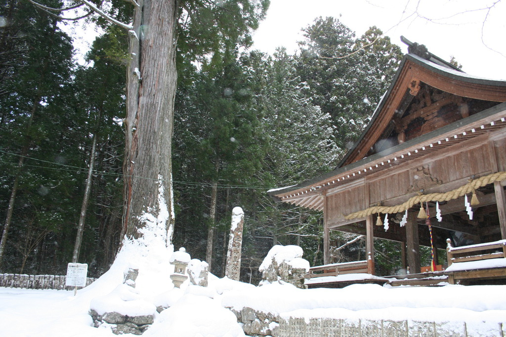 名所 冬 (3).JPG