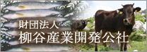 柳谷産業開発公社
